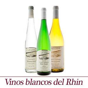 Vinos blancos del Rhin - Productos seleccionados con esmero